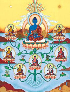 8-medicine-buddhas-by-carmen-mensink