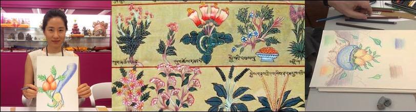 plants-herbs-tibetan-medicine