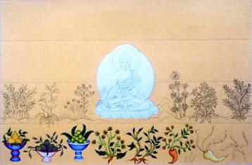 tibetan-medicine-healing-herbs-carmen-mensink