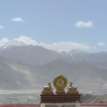 wheel-and-deer-tibet-monastery