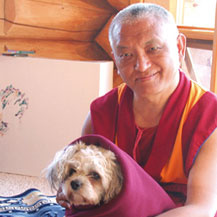 lama-zopa-rinpoche-animal-liberation