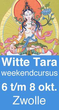 Witte Tara, Boeddha van Lang Leven tekenen volgens de tibetaans boeddhistische thangka traditie
